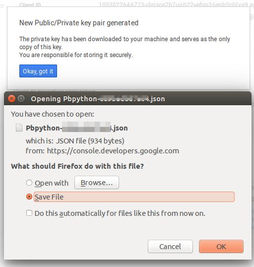 Download the json key