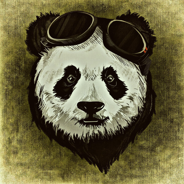 Stylin' with Pandas - Practical Business Python